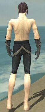Elementalist Ascalon Armor M gray arms legs back