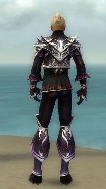 Elementalist Deldrimor Armor M dyed back