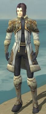Elementalist Norn Armor M gray front