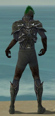 Necromancer Elite Necrotic Armor M gray chest feet back