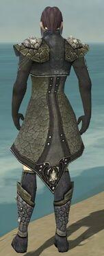 Elementalist Elite Stoneforged Armor M gray chest feet back