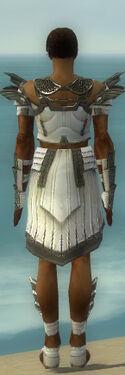 Paragon Ancient Armor M gray back