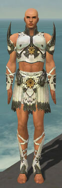 Paragon Sunspear Armor M gray front