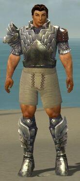 Warrior Templar Armor M gray chest feet front