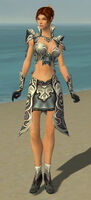 Elementalist Monument Armor F gray front