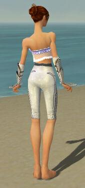 Elementalist Tyrian Armor F gray arms legs back