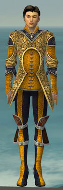Elementalist Canthan Armor M dyed front