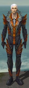Necromancer Krytan Armor M dyed front