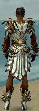 Paragon Primeval Armor M dyed back