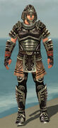 Warrior Ancient Armor M gray front
