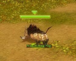 Pwhog
