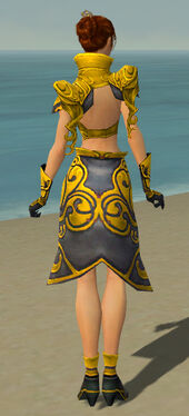 Elementalist Monument Armor F dyed back