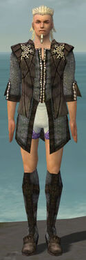 Elementalist Sunspear Armor M gray chest feet front