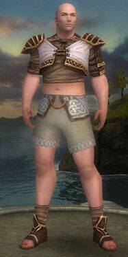Monk Elite Canthan Armor M gray chest feet front