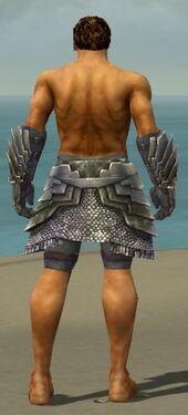Warrior Templar Armor M gray arms legs back
