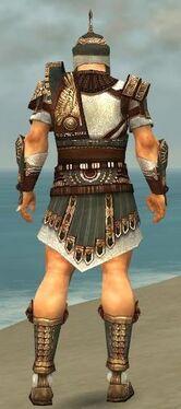 Warrior Vabbian Armor M gray back