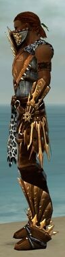 Ranger Elite Sunspear Armor M dyed side
