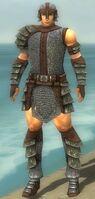 Warrior Krytan Armor M gray front