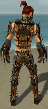 Assassin Elite Exotic Armor M gray back
