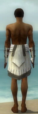 Paragon Ancient Armor M gray arms legs back