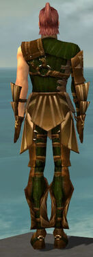 Ranger Sunspear Armor M dyed back