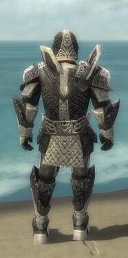 Warrior Elite Platemail Armor M dyed back