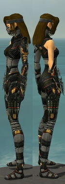 Assassin Elite Kurzick Armor F gray side