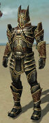 Warrior Kurzick Armor M gray front