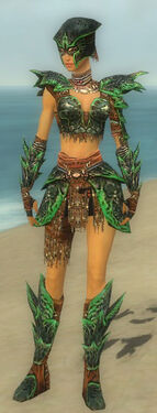 Warrior Luxon Armor F dyed front