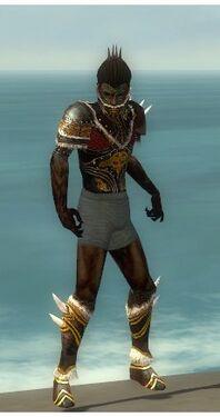 Necromancer Norn Armor M gray chest feet front