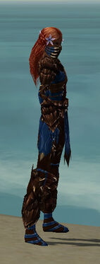 Ranger Primeval Armor F dyed side