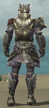 Warrior Templar Armor M gray back