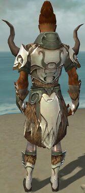 Paragon Norn Armor M gray back