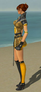 Elementalist Canthan Armor F dyed side