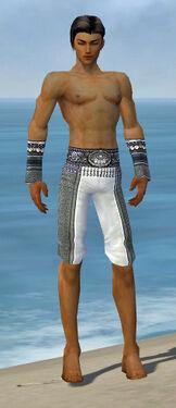 Elementalist Luxon Armor M gray arms legs front