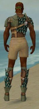Ranger Drakescale Armor M gray chest feet back