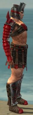Warrior Elite Gladiator Armor M dyed side
