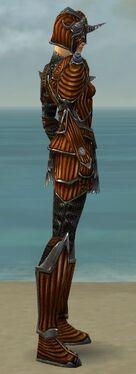 Warrior Wyvern Armor F dyed side