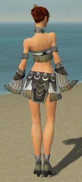 Elementalist Luxon Armor F gray back
