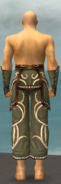 Monk Shing Jea Armor M gray arms legs back