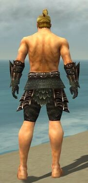 Warrior Elite Dragon Armor M gray arms legs back