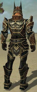 Warrior Kurzick Armor M gray back