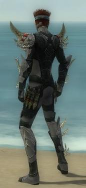 Assassin Elite Imperial Armor M gray back