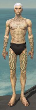 Necromancer Scar Pattern Armor M gray arms legs front