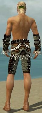 Ranger Kurzick Armor M gray arms legs back