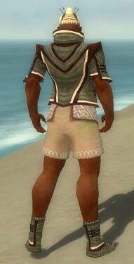 Monk Kurzick Armor M gray chest feet back