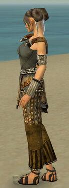 Monk Sunspear Armor F gray side
