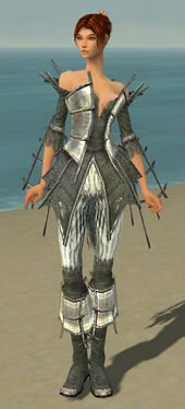 Elementalist Primeval Armor F gray front