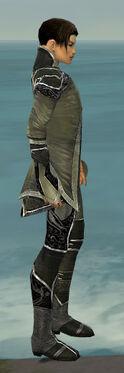 Elementalist Shing Jea Armor M gray side