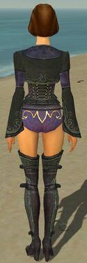Mesmer Elite Rogue Armor F gray chest feet back